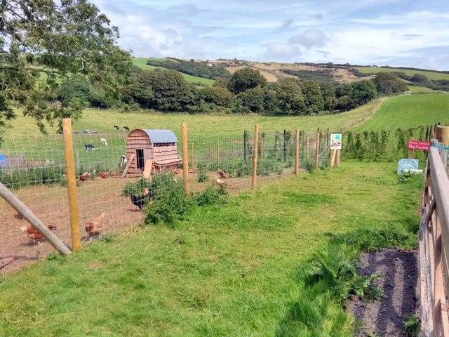 Whitewell Farm