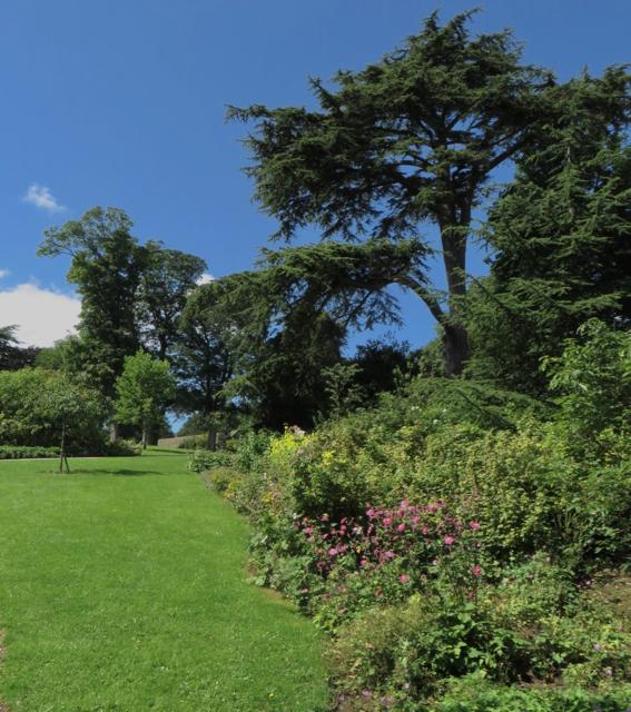 The Shrubbery, Cusworth Park