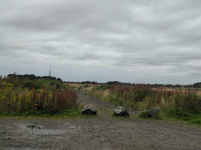 Blocked track entrance, Castlehill Wood