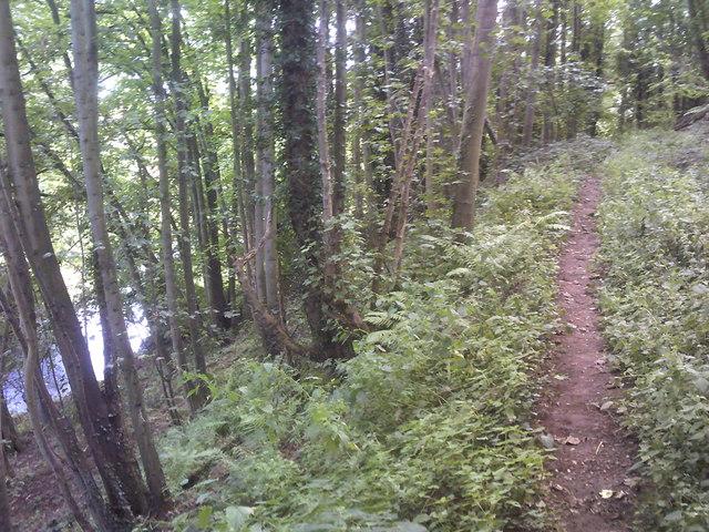 River Footpath