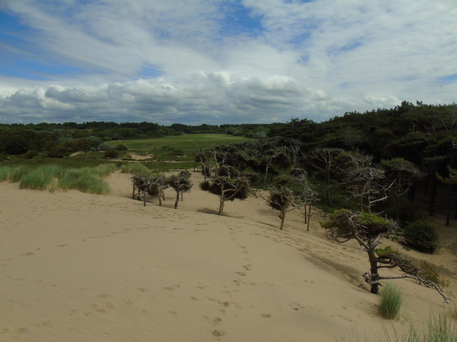 Formby Point to the Old Asparagus Fields