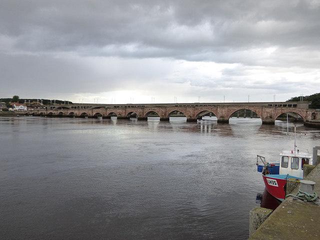 Berwick bridge from the docks
