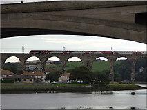 NT9953 : HST on the Royal Border Bridge by Stephen Craven