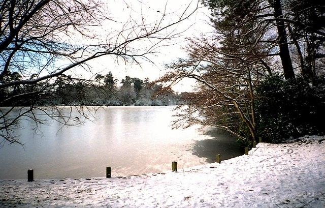 South Lake Woodley
