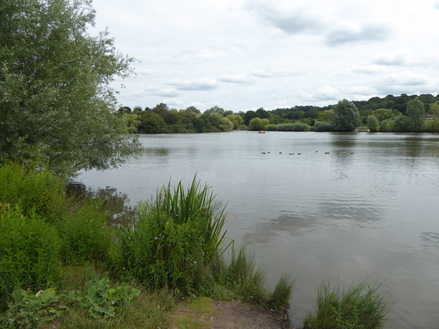 The Lake in Hainault Forest Country Park