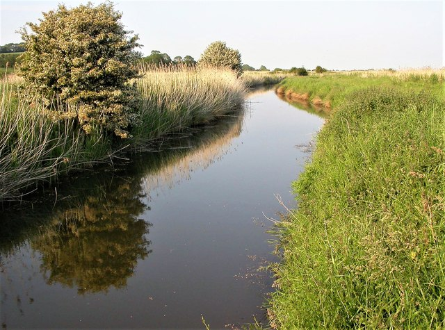 The Pannel Sewer in the Pannel Valley near Pannel Farm