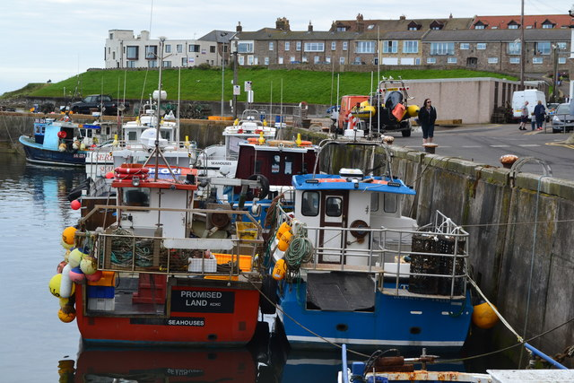 Harbour at Seahouses
