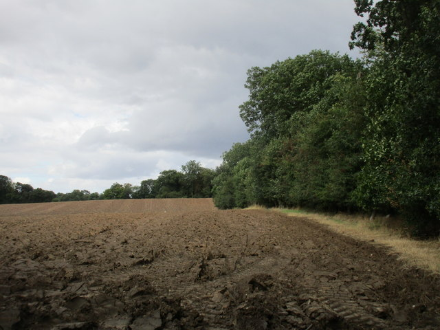 Deep ploughed field by Roehill Wood