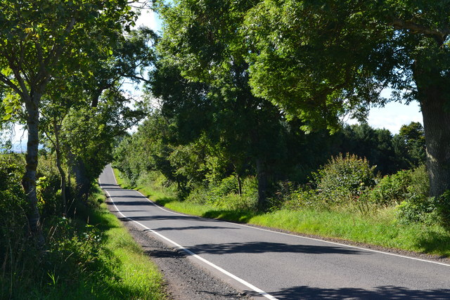 Lane near Whitsomehill