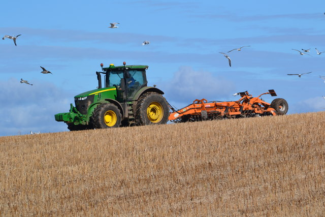 Tractor on skyline with seagulls