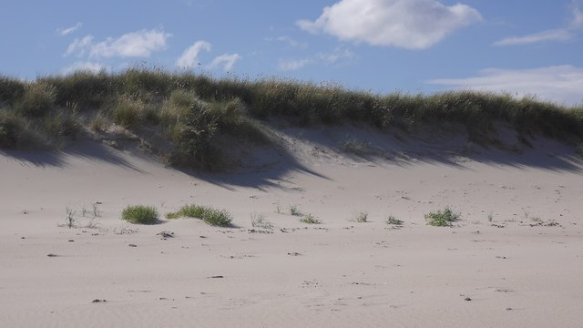 Active dune front, Old Law