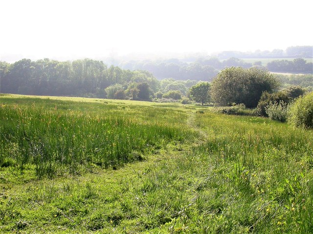 Footpath across Marline Meadows