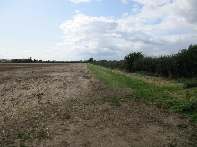 Footpath off Holmes Lane