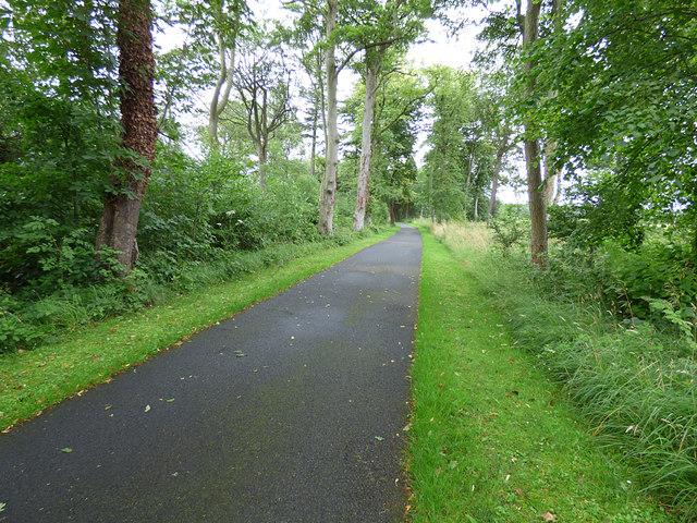 Fallodon Avenue (1)
