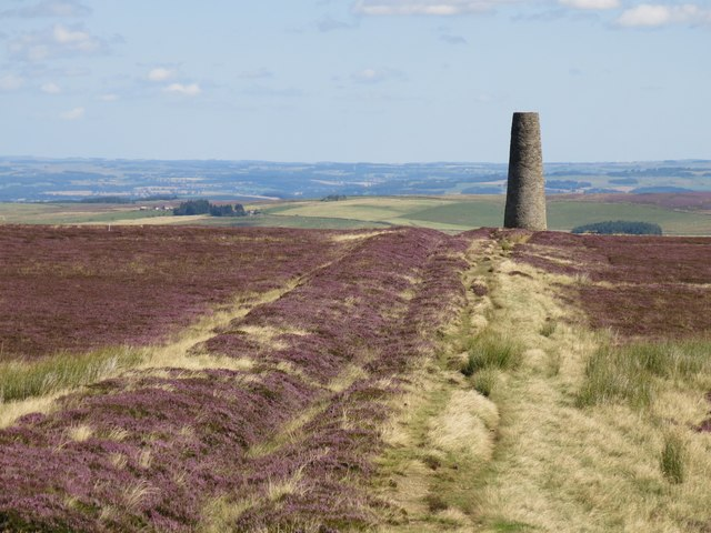 Allendale lead smelting flue south of the northern chimney