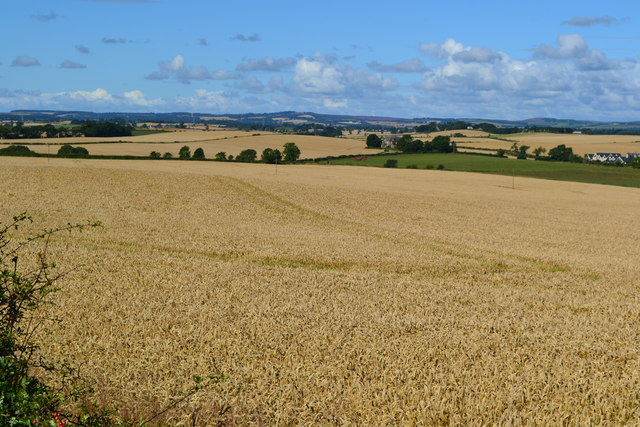 Farmland view opposite Glenhall Cottages