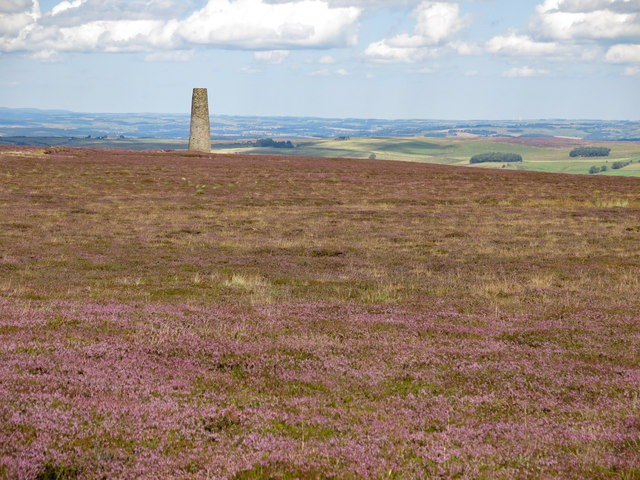 Heather moorland south of the northern Allendale lead smelting flue chimney