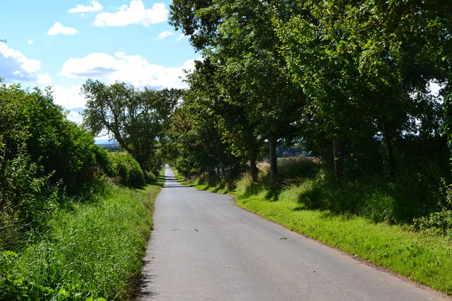 Lane south from Lintlaw