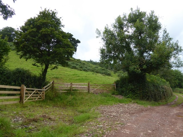 Gates into two hillside fields south of Ashilford