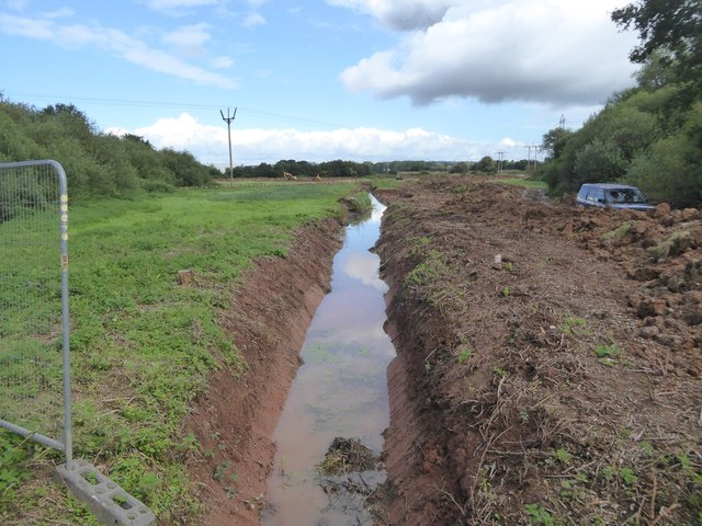 Improving the Matford Marshes nature reserve