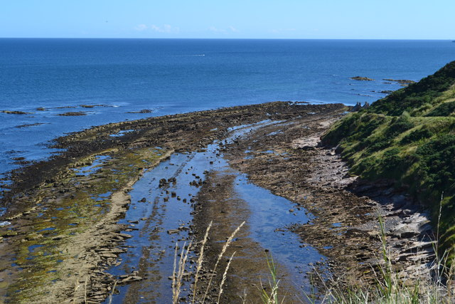 Low-tide rocks at Cove