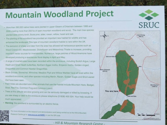 Mountain Woodland Project Information Board