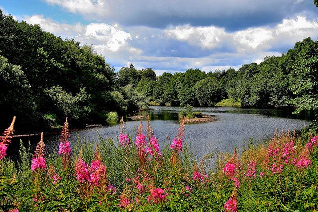River North Tyne Bellingham