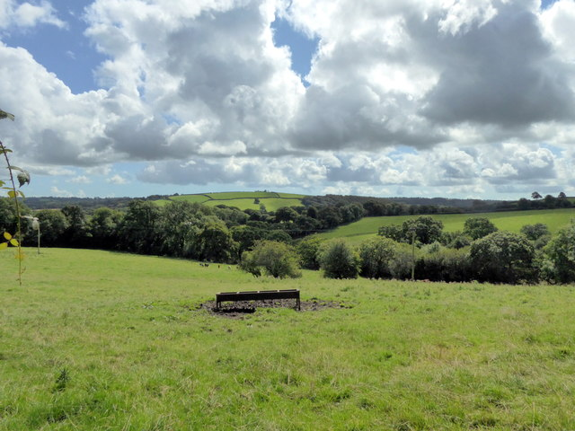Animal Feeding Trough in field near Llawhaden