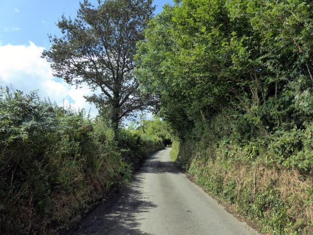 Lane near Llawhaden