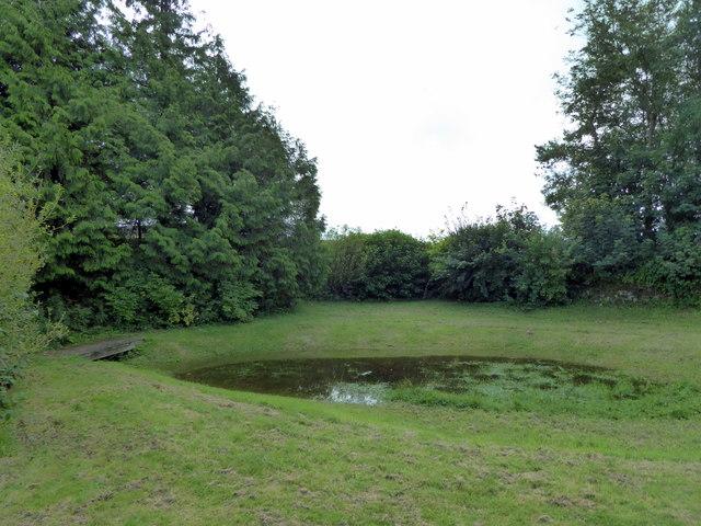 Medieval fish pond, Llawhaden