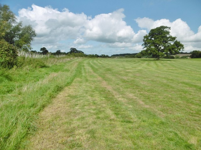 Hinton St Mary, grassland