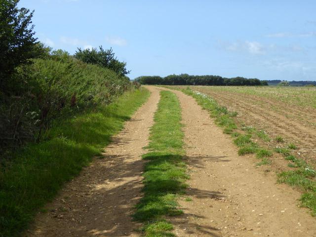 Track past Lessland Farm