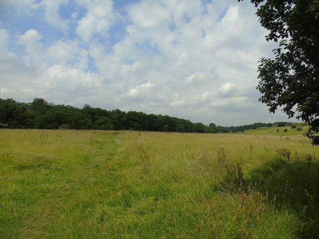 Meadow at Peel Brow