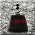 NS3882 : Navigation buoy on Loch Lomond by Gerald England