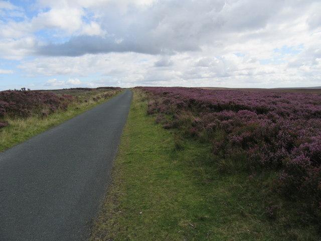 Elm Ledge road