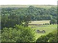 SD9371 : Castleberg Barn by Stephen Craven