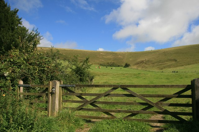 Gate at the end of White Hill track, Long Bredy