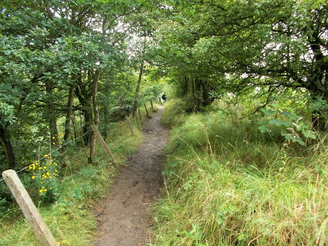 Swanwick to Butterley railway path