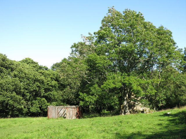 Old railway goods van and ruined building on a haugh by the Rowley Burn