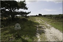 SZ0284 : Entering National Trust property at Godlingston Heath by Becky Williamson