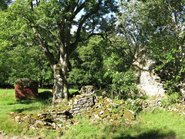 Old railway goods van and ruined building on a haugh by the Rowley Burn (4)