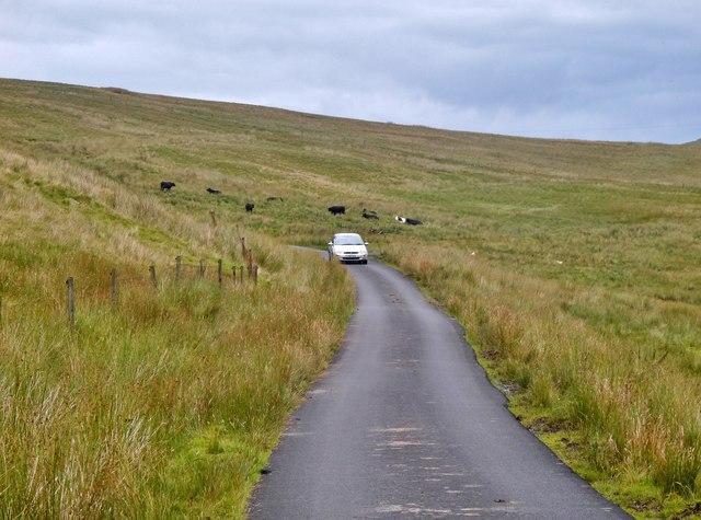Old Largs Road below Knockencorsan
