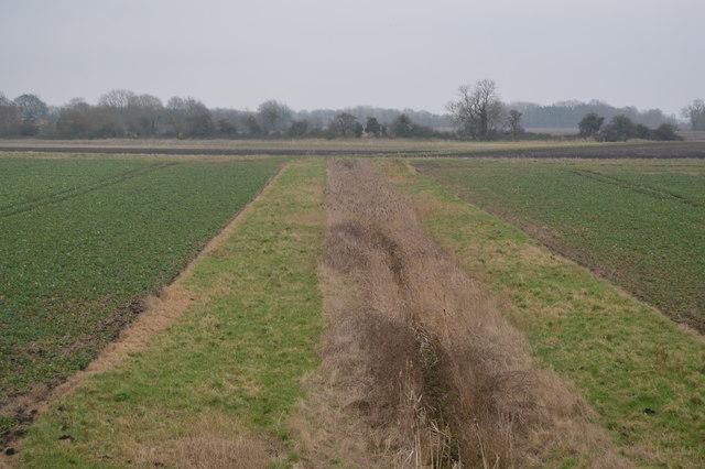 Ditch, Further Fen