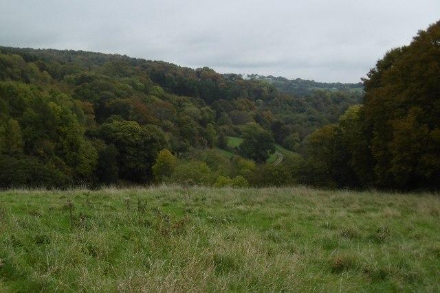 Field, Duffield's Farm