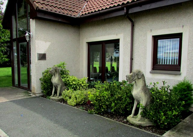 Guard dogs!