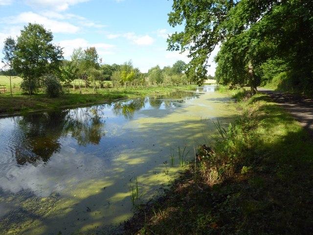 The Canal, Chillington Park