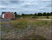 SK5802 : Waste ground next to the Saffron Lane Athletics Stadium by Mat Fascione