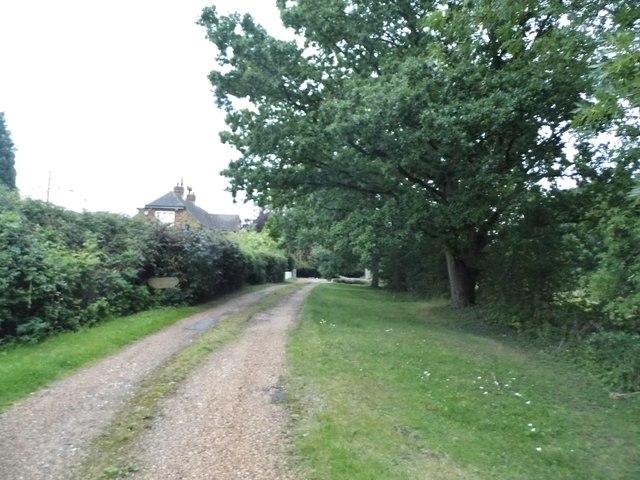 Track to Rose Farm, Thornwood Common