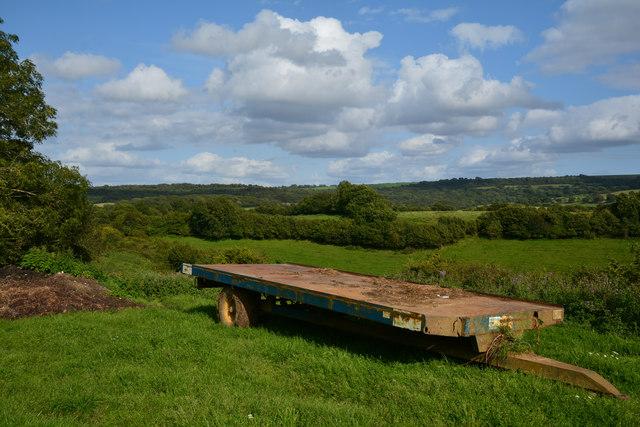 West Dorset : Grassy Field
