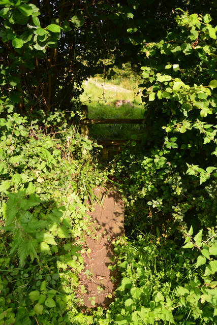 West Dorset : Muddy Path